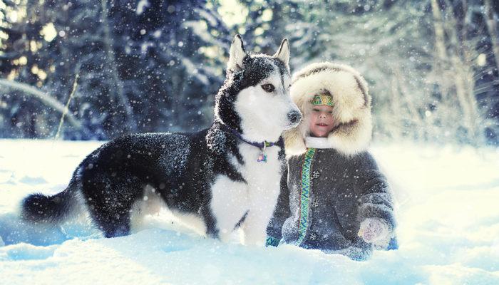Каким бизнесом можно заняться зимой