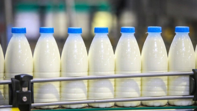 Открываем молочный завод: все, что нужно знать об этом бизнесе